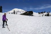 Snow-covered Paradise at Mount Rainier National Park on a day tour from Seattle