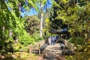 Scenic walking trails at Bloedel Reserve on a Bainbridge Island day tour from Seattle
