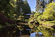 Tea house and gardens at Bloedel Reserve on a Bainbridge Island day tour from Seattle